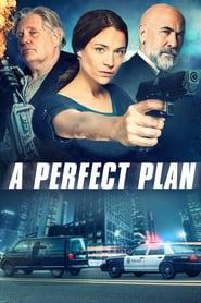 A Perfect Plan 2020 123movies