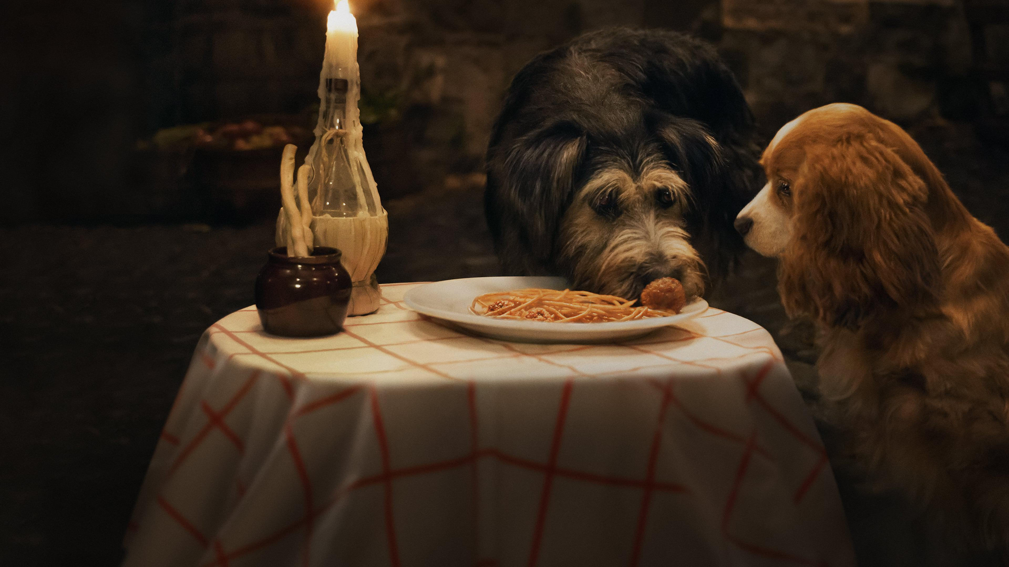 Lady and the Tramp 2019 123movies