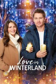 Love in Winterland 2020 123movies