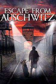 The Escape from Auschwitz 2020 123movies